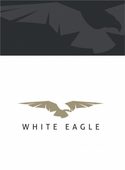 Logotyp luksusowych łodzi i jachtów - White Eagle